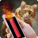 Bang Petard Deafened Cat Joke by Joke Apps And Games