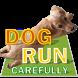Dog Run Carefully by ProjectJIIJI