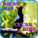 Kicau Cucak Biru Mp3 by iky94 studio