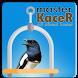 Kicau Kacer Jawara by zaviaproject