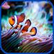 Real Aquarium Fish Images by aifzcc.studio