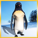 Funny Penguin Live Wallpaper by MVB Group