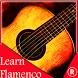 Learn *FLAMENCO* Guitar Videos by Alexandros Iacovides