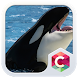 Big Whale C Launcher Theme by CG-Live-Wallpapers