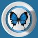 ylfrettuB - Social Network by ylfrettuB