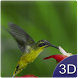 Flying Birds 3D by Freedom Software apps