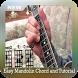 Easy Mandolin Chord and Tutorial by Handcraft Studio