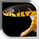 Snake Live Wallpaper by POP TOOLS