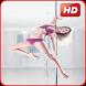 Pole Dance Beginner