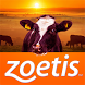 Zoetis by EAI South Africa