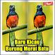 Baru Kicau Burung Murai Batu by kumpulan lagu dev