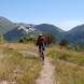 Mountain Bike Mayhem by Database Capital LLC
