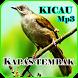 Kicau Kapas Tembak Masteran by iky94 studio