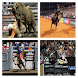Bull Riding Live Wallpaper by Droid Flavor