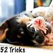 52 Dog Training Tricks by itsRu