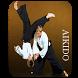 Aikido by Anastore