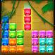 Jungle Jewel Block Puzzle by FlamesGo