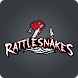 Rattlesnakes by Mobile Inventor Corp