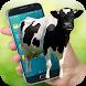 Cow on Screen Funny Cute Cow Walking in Phone Joke by joya barn