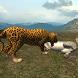 Real Jaguar Simulator by PT Game Studio