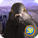 Pigeon Simulator: City Bird by Wild Animals World