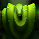 Snake The Best Free Game by HDLA
