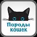 Породы кошек Энциклопедия by remind4u2