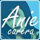 Top Lagu Anie Carera Terbaik by jobex apps