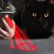 Laser Pointer for Cat by Astrologic Media
