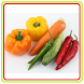 Garden Square Vegetables Guide by Free Games, Education, and Video Apps