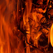 burning fire wallpaper by funny wallpapers fun llc