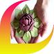 Handmade Paper Flower by Jamianid
