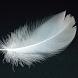 Feather Wallpapers by Sakakibara