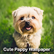 Cute Puppy Wallpaper by BackStage Apps