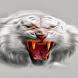 White Wild Tiger LWP by Daksh Apps