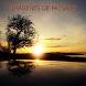 Imagenes De Paisajes by Robe