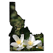 Idaho Wildflower Search by Wildflower Search