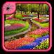 Garden Flowers Design Ideas by Black Arachnia
