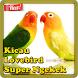 Kicau Lovebird Super Ngekek by Kicau Burung Dev