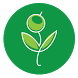 Green Life Magazine - Español by Proyecta ARPYCOM