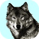Wolf Sounds Free by Dreamapps15