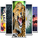 HD Backgrounds (Wallpapers) by Amit chakraborty