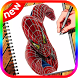 Learn How to Draw:spider Man Easy Step by Apps4kids