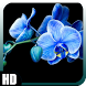 Orchid Wallpaper by GalaxyLwp