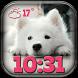 Puppies Weather Clock Widget by Cuteness Inc.