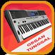 Organ Tunggal Karaoke by Gnosim Dev