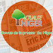 NEWS ACTUALITE NIGER by LUXE CONSULTING