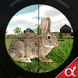 Rabbit Hunting Challenge by ALPHA Games Studio
