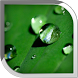 Water Drop Live Wallpaper by POP TOOLS