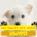 West Highland White Terrier Dog Wallpaper
